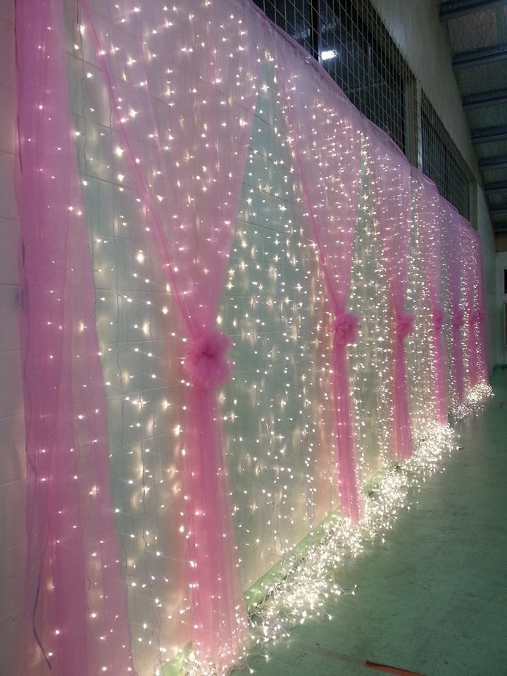 Christmas Tree Seed Lights Led Large Fairy Light Curtain